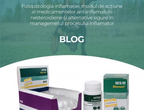 Fiziopatologia inflamatiei, modul de actiune al medicamentelor antiinflamatorii nesteroidiene si alternative sigure in managemetul procesului inflamator